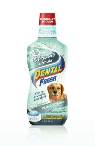 SynergyLabs - Dental Fresh Original - płyn do higieny jamy ustnej, 237 ml